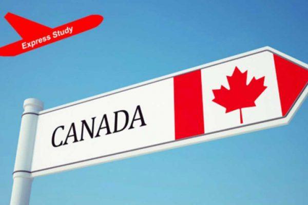 Du học Canada có yêu cầu gì về Visa?