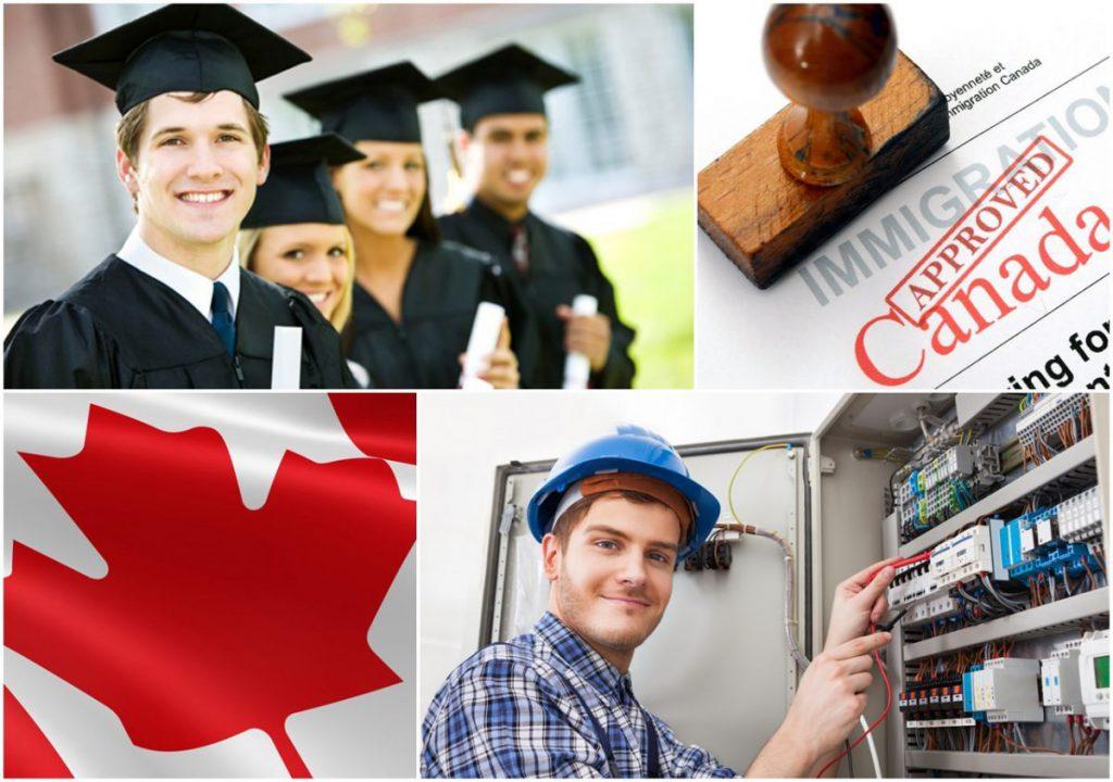Du học Canada nên chọn ngành gì